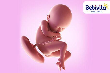savjeti za vrijeme trudnoće